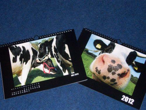 rinderkalender-2012.JPG