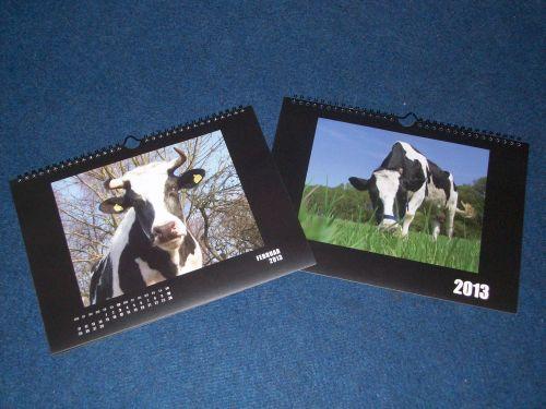 rinderkalender-2013.JPG