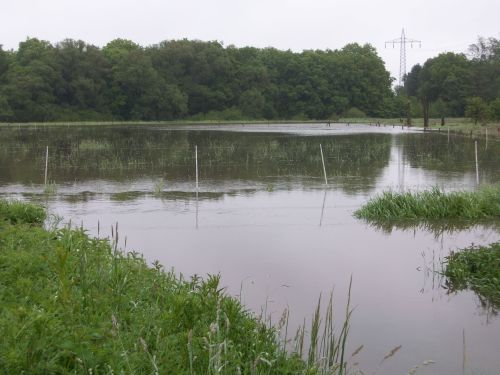 Überschwemmung03_27.05.2013