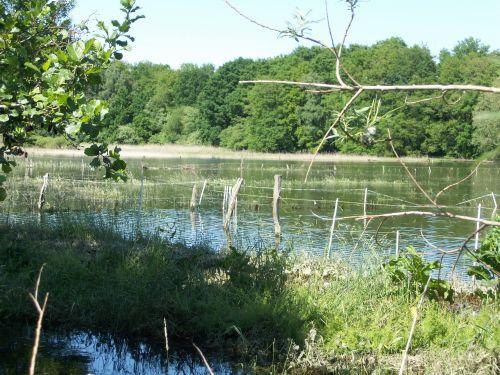 Hochwasser02_05.06.13