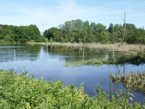 Hochwasser03_05.06.13