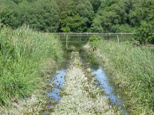 Hochwasser_05.06.13