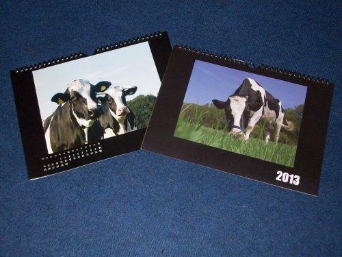 Foto für Bestellung_Rinderkalender 2014KLEIN