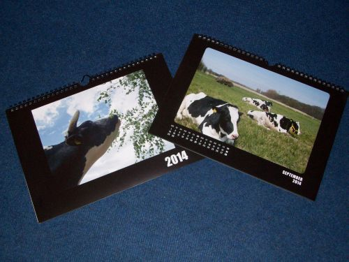 Rinderkalender 2014_Klein